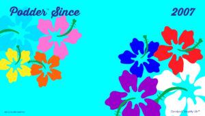 Zoom-Flower_Updated_2007_tm
